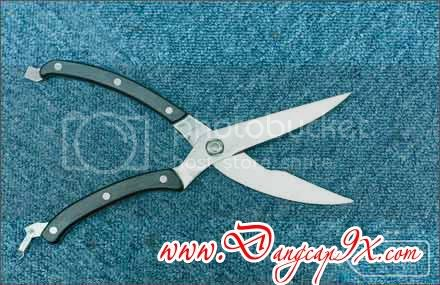 K&eacute;o Ct G Kitchen Scissors